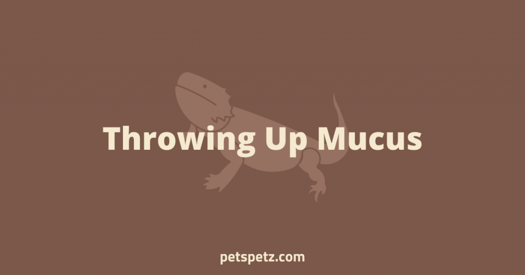 Bearded Dragon Throwing Up Mucus