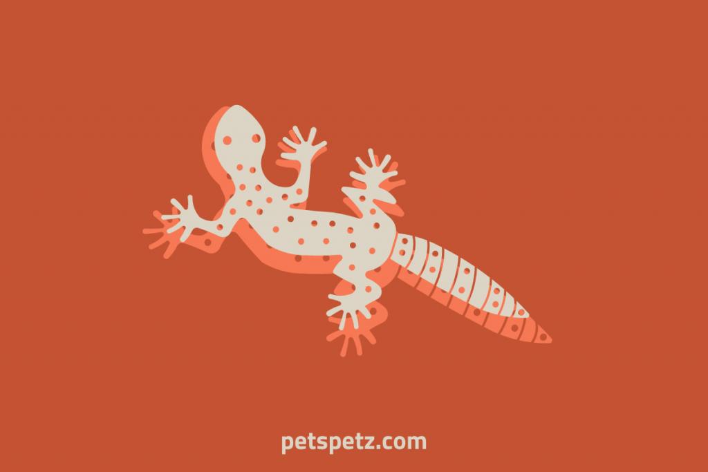Do Leopard Geckos Fire Up