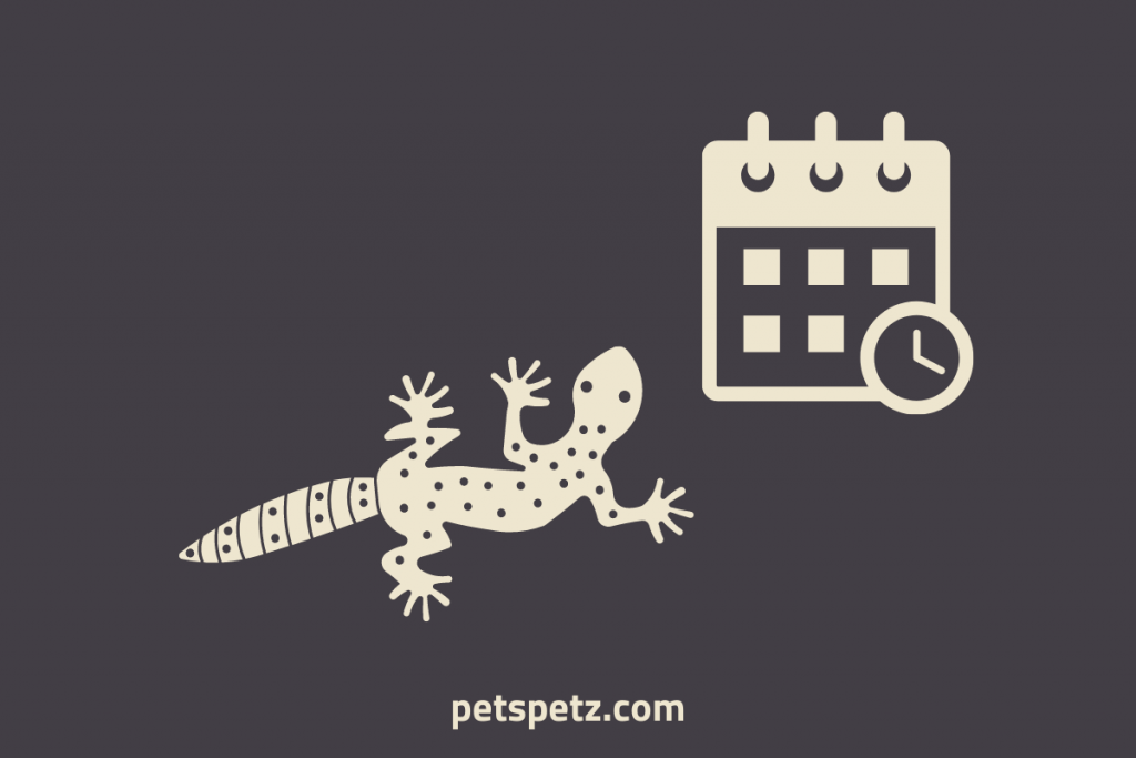 How Long Can A Leopard Gecko Go Without Eating