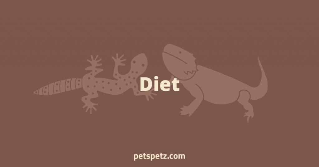 leopard gecko or bearded dragon