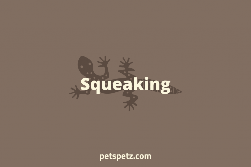 leopard gecko squeak