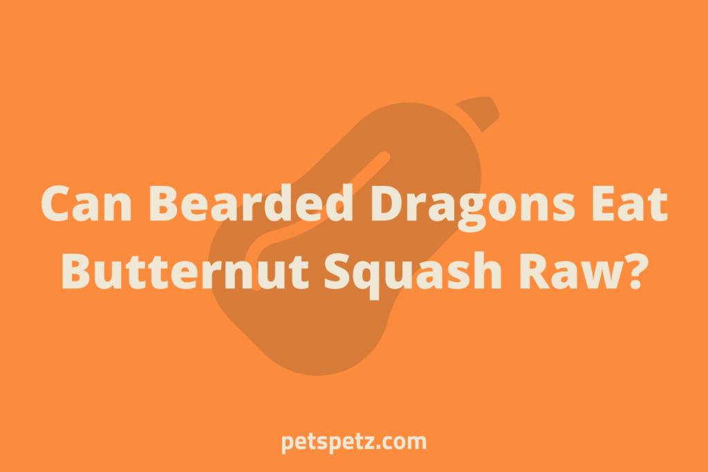 Can Bearded Dragons Eat Butternut Squash Raw