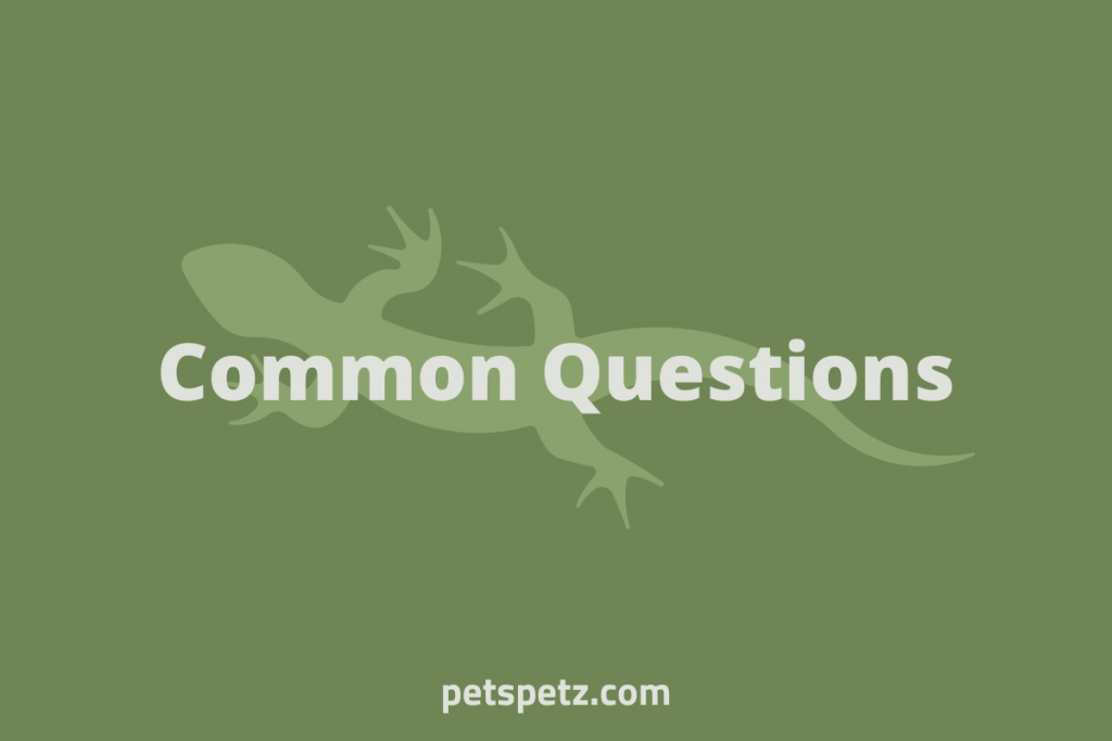 Common Questions (1)