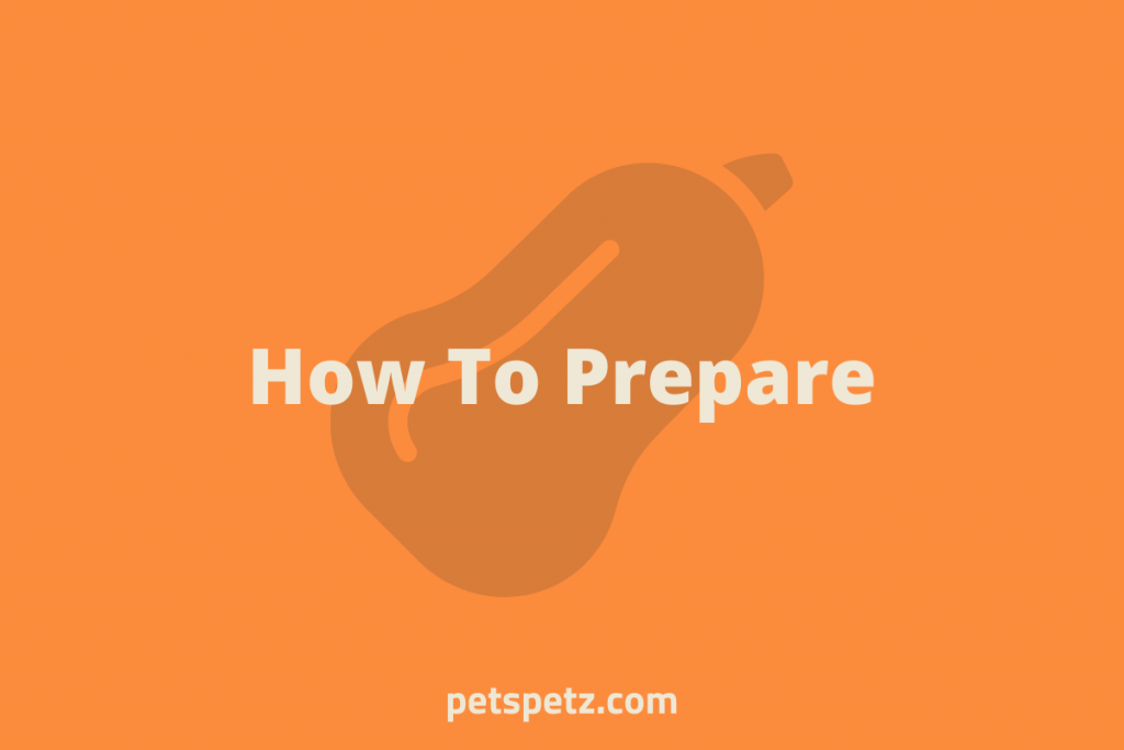 How To Prepare Butternut Squash For Bearded Dragons (1)