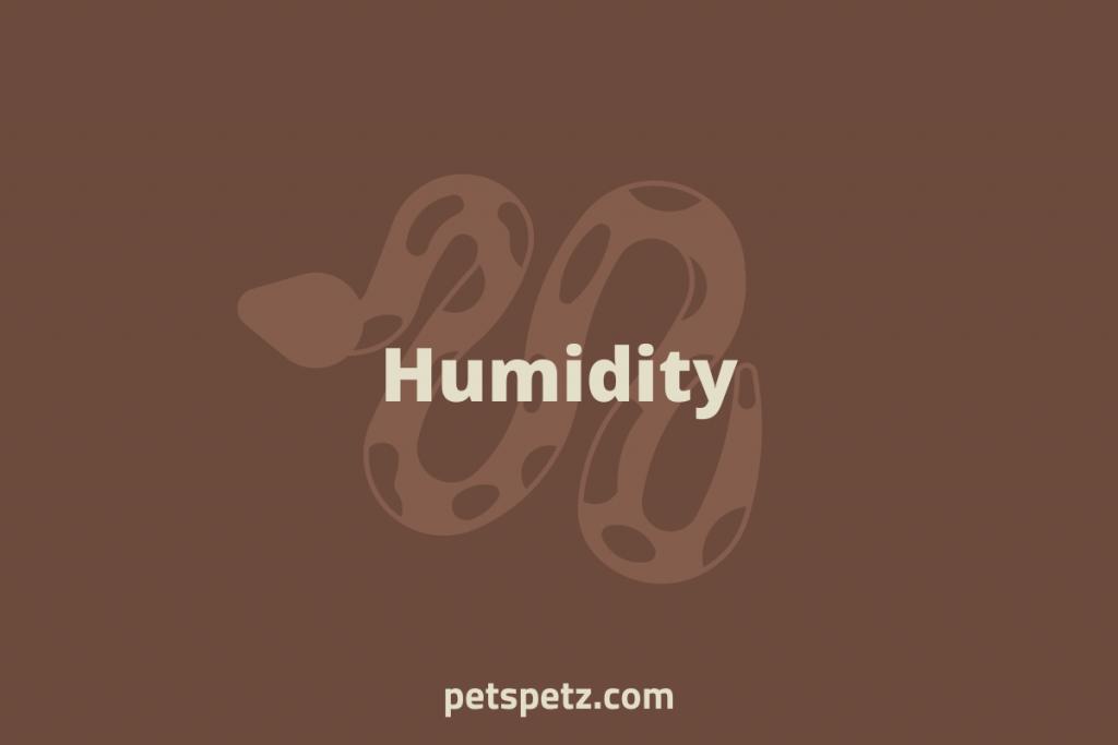 ball python Humidity requirements
