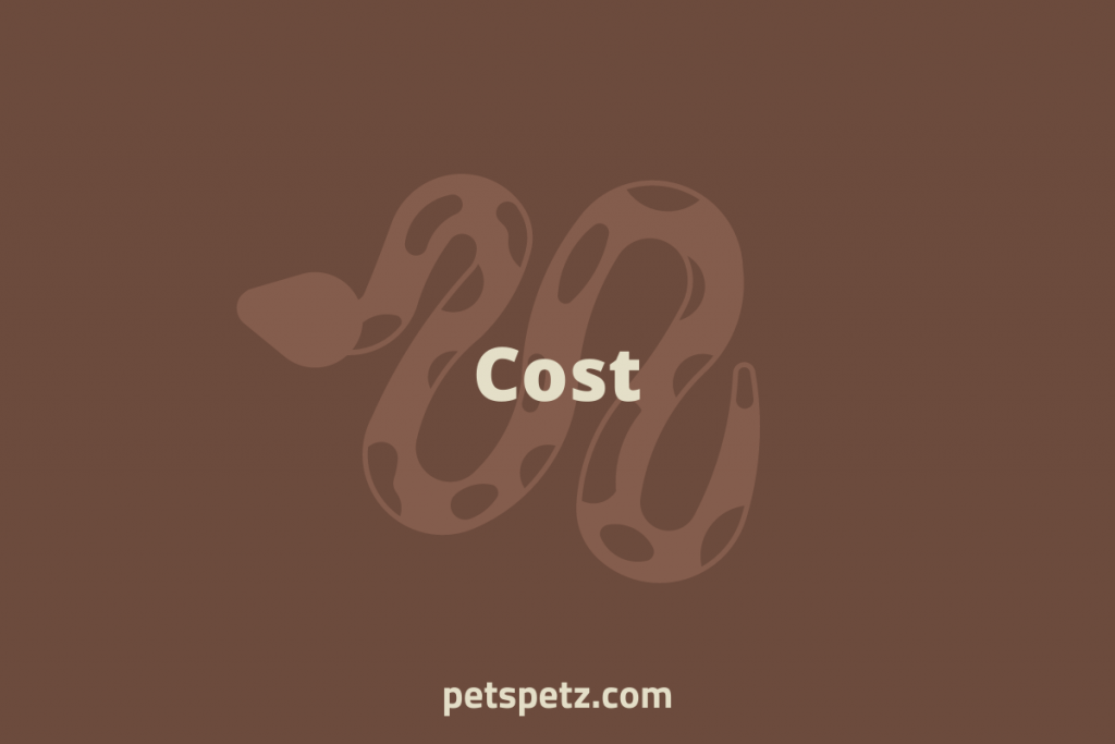 ball python cost per month